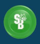 ZingBee Flyer Disc